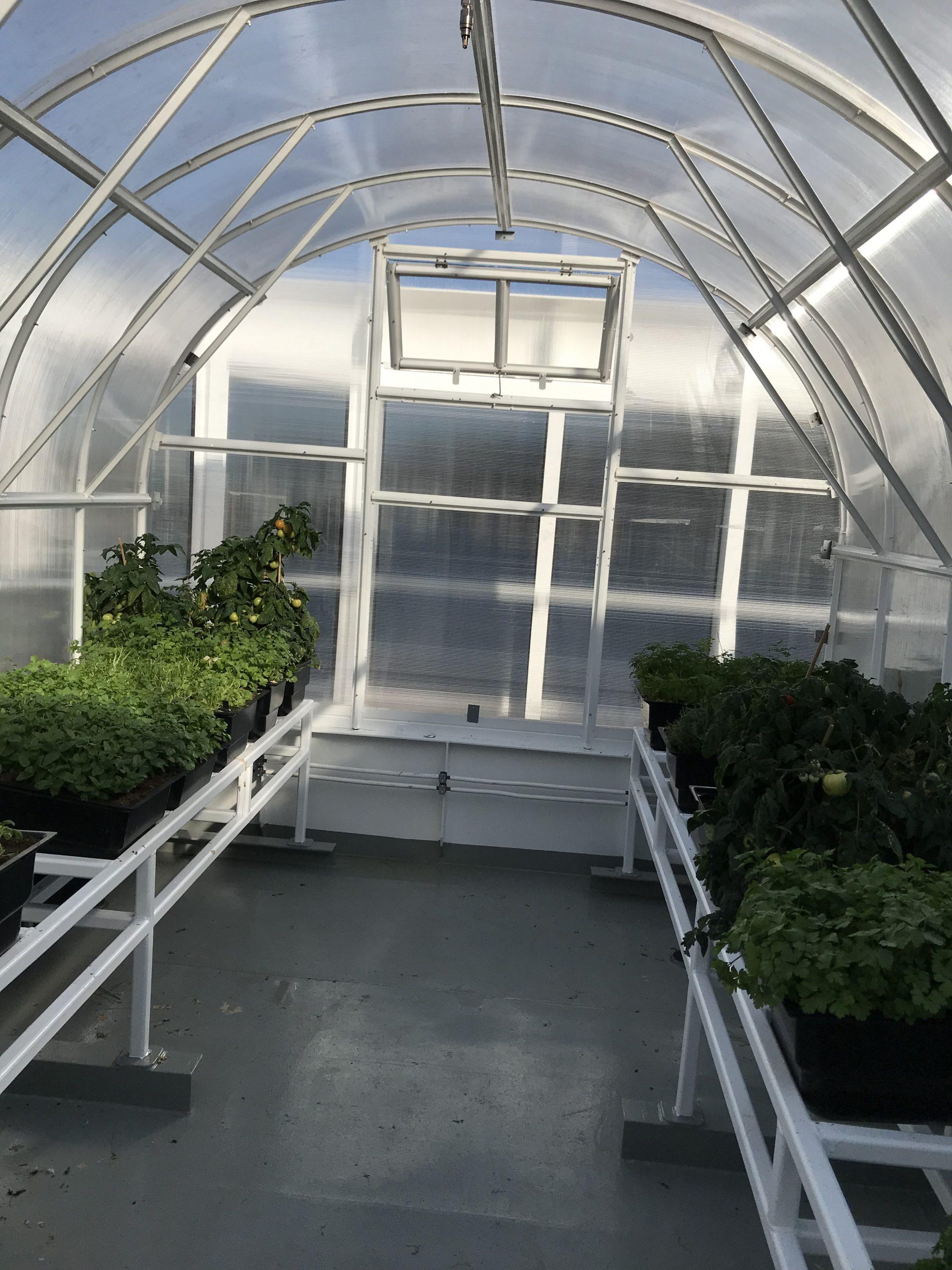 Växthus ARCHED KLASSISK