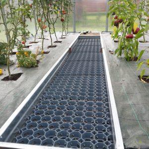 Områdesdelar i växthus STANDARD