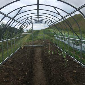 ARCHED KLASSISK Växthusförlängning, 2m Längd